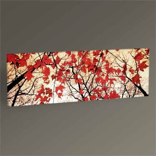 Tablo 360 Bare Branches And Red Maple Leaves 60X20