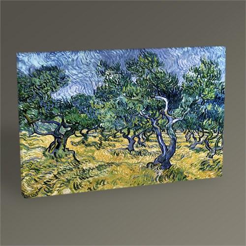Tablo 360 Vincent Van Gogh-Olive Grove Tablo 45X30