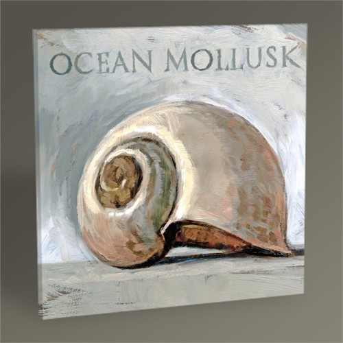Tablo 360 Ocean Mollusk Tablo 30X30