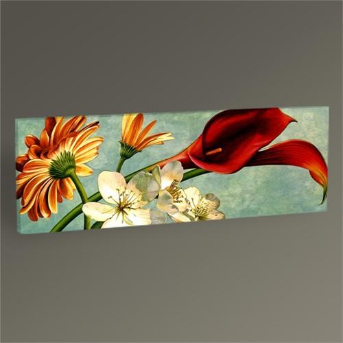 Tablo 360 Dekoratif Çiçekler Tablo 60X20