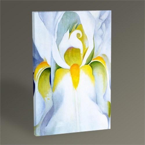 Tablo 360 Georgia O'keeffe White Iris 45X30