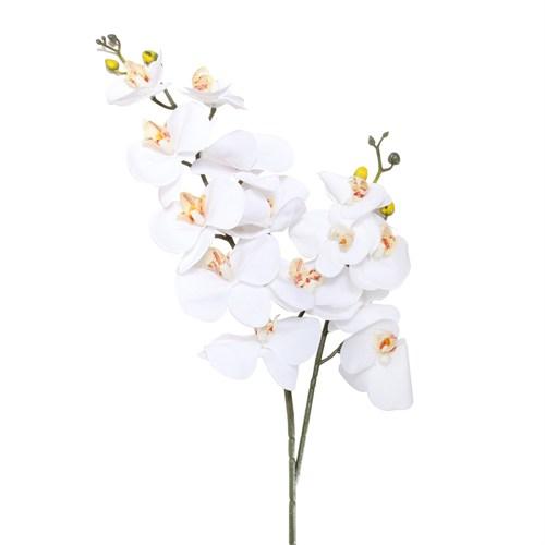 Altıncı Cadde Tek Dal Orkide Beyaz