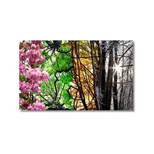 Tictac Mevsimler Kanvas Tablo - 60X90 Cm