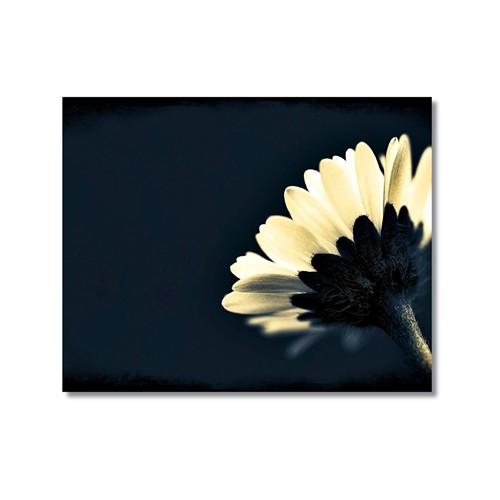 Tictac Beyaz Çiçek Kanvas Tablo - 40X60 Cm