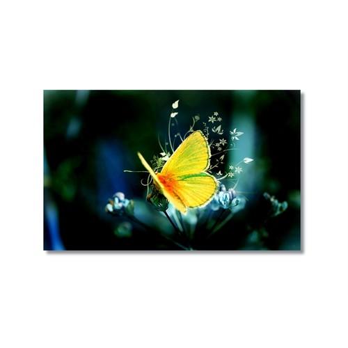 Tictac Sarı Kelebek 3 Kanvas Tablo - 50X75 Cm