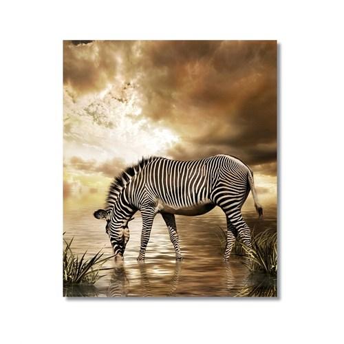 Tictac Su İçen Zebra Kanvas Tablo - 50X75 Cm