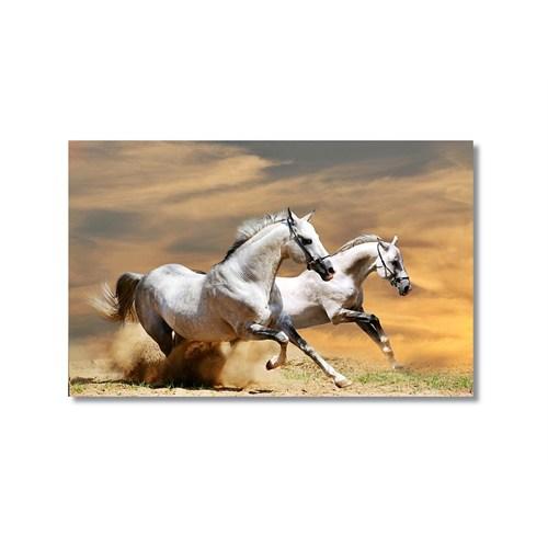 Tictac Beyaz Atlar Kanvas Tablo - 60X90 Cm