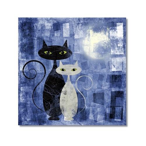 Tictac Siyah Ve Beyaz Kediler 1 Kanvas Tablo - 50X50 Cm