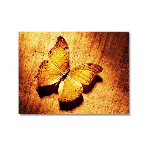 Tictac Sarı Kelebek 2 Kanvas Tablo - 60X60 Cm