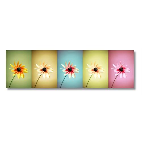 Tictac Renkli Çiçekler Kanvas Tablo - 25X100 Cm