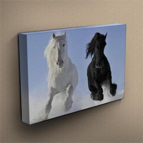 Canvastablom T196 Siyah Beyaz Atlar Kanvas Tablo