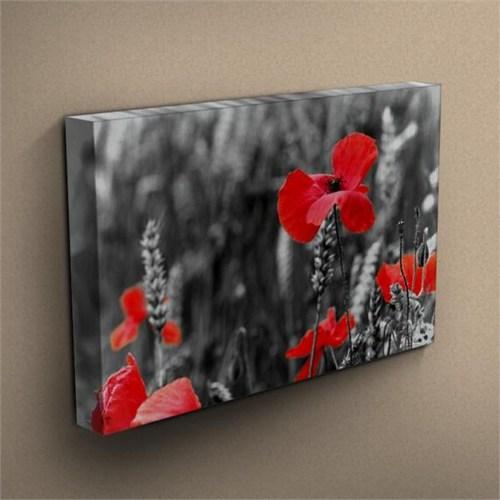 Canvastablom T266 Flowers Kanvas Tablo