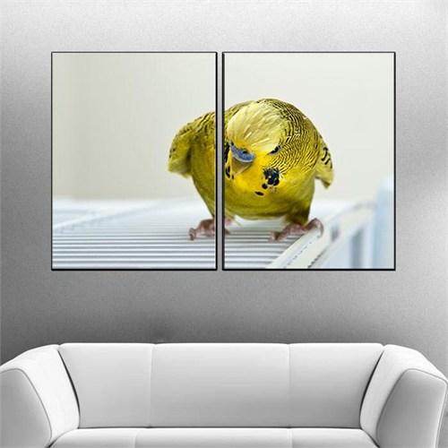 Canvastablom İ209 Muhabbet Kuşu Parçalı Kanvas Tablo