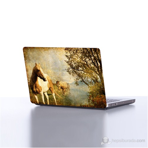 Dekorjinal Laptop StickerDLP47