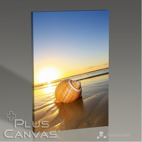 Pluscanvas - Sea Shell On Sand Tablo