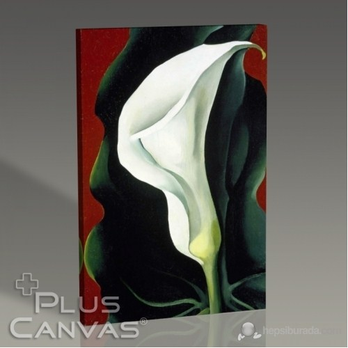 Pluscanvas - Georgia Okeeffe - Single Lily With Red 1928 Tablo