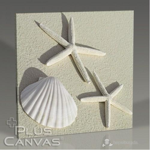 Pluscanvas - Sea Shells Tablo
