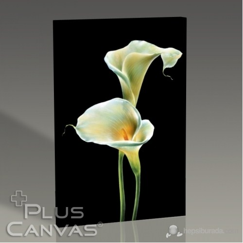 Pluscanvas - Lillies On Black Tablo
