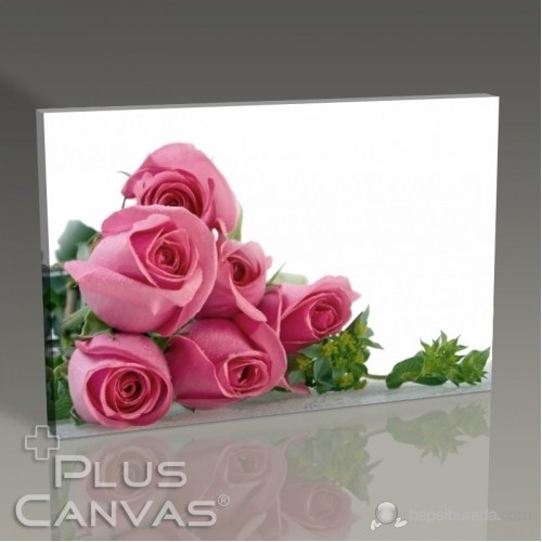 Pluscanvas - Pink Roses Tablo