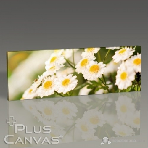 Pluscanvas - Flowers I Tablo