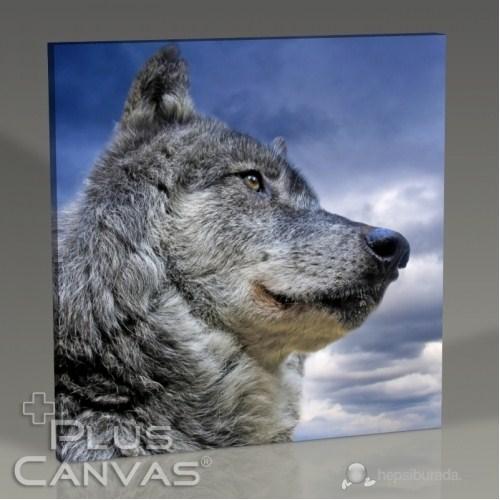Pluscanvas - Wild Wolf Tablo