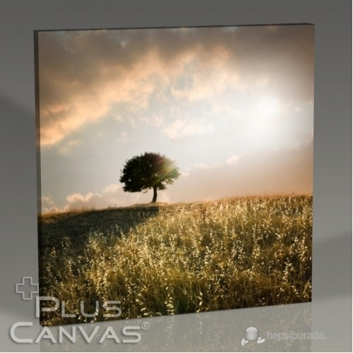 Pluscanvas - Loner Tree Tablo