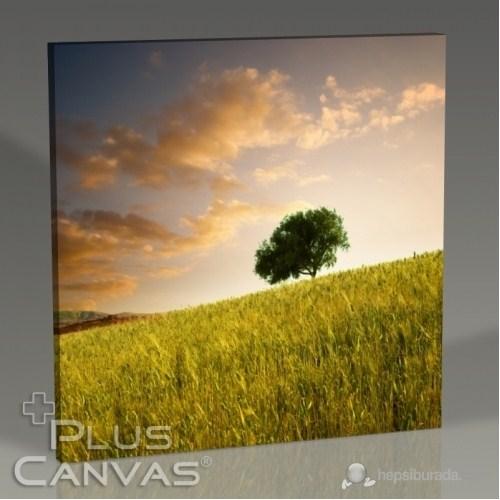 Pluscanvas - Sloping Land Tablo