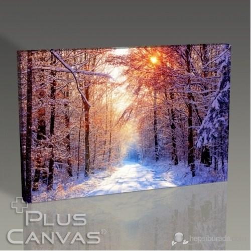 Pluscanvas - Snowy Road Tablo
