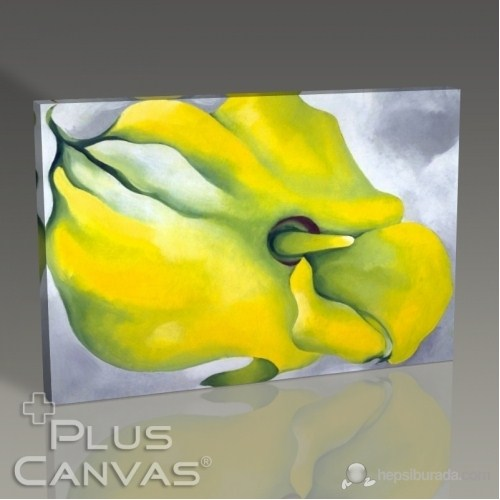 Pluscanvas - Georgia Okeeffe - Figure I Tablo