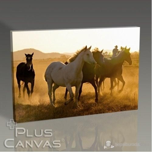 Pluscanvas - Horses Tablo