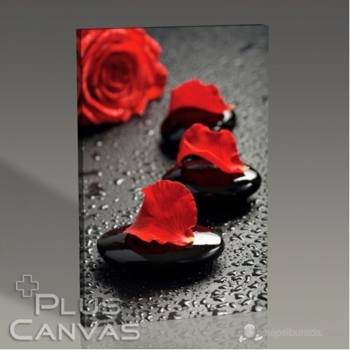 Pluscanvas - Black Pebbles And Red Rose Tablo
