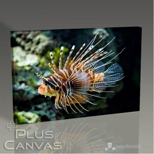 Pluscanvas - Mc Rotfeuerfisch Tablo