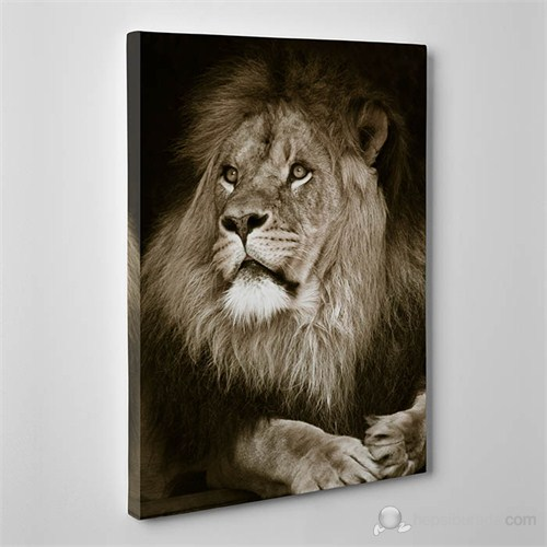 Tabloshop - Aslan Canvas Tablo - 75X50cm