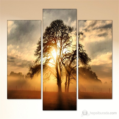 Tabloshop - Alone Tree 3 Parçalı Canvas Tablo 90X94cm