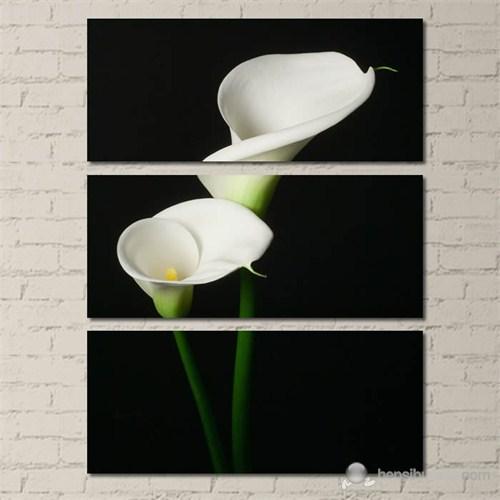 Tabloshop - Modern Two Flower - 3 Parçalı Kanvas Tablo 70X96cm