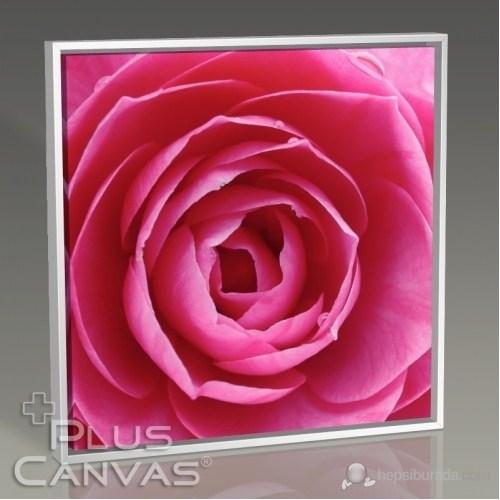 Pluscanvas - Pink Rose Tablo