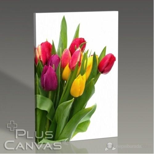 Pluscanvas - Flower Iı Tablo