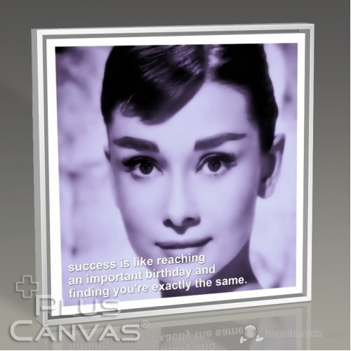 Pluscanvas - Audrey Hepburn - Success Tablo