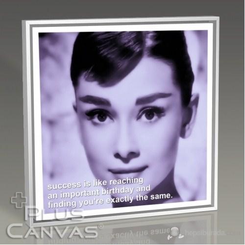 Pluscanvas - Audrey Hepburn - Success Tablo