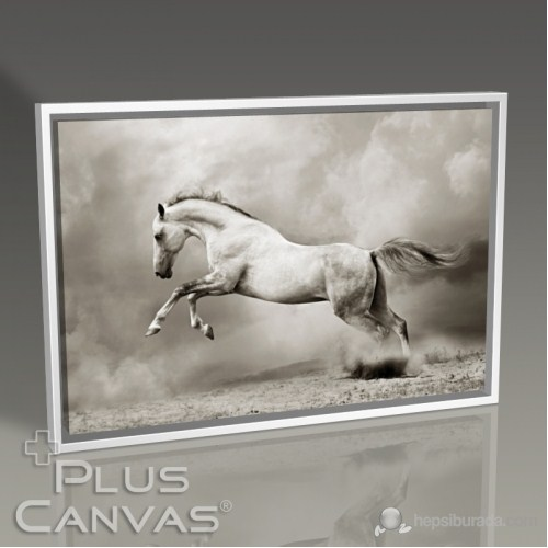 Pluscanvas - Gümüş Rengi At Tablo