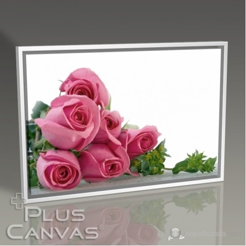 Pluscanvas - Pink Roses Tablo
