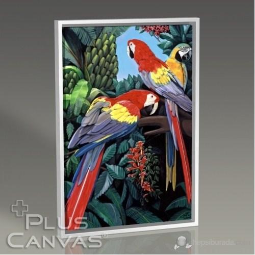 Pluscanvas - Parrots Tablo