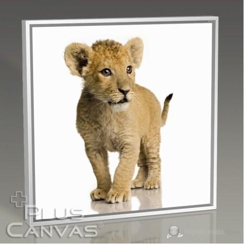 Pluscanvas - Beware Of The Lion Tablo