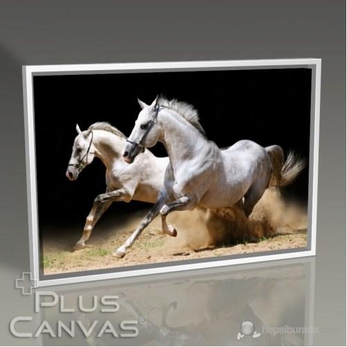 Pluscanvas - White Horses Tablo