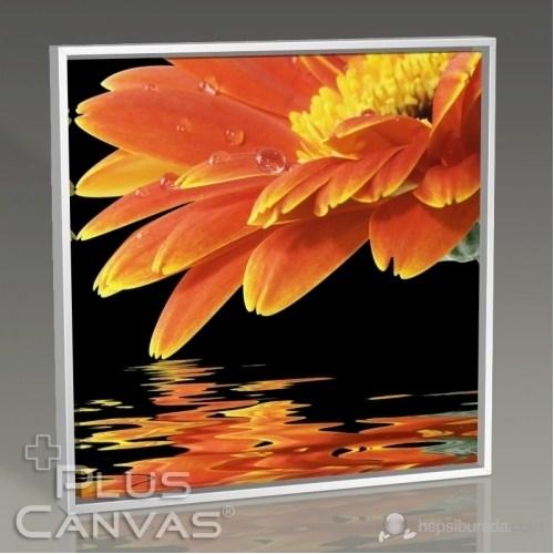 Pluscanvas - Orange Daisy Tablo