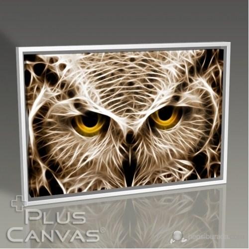 Pluscanvas - Closeup Owl Tablo