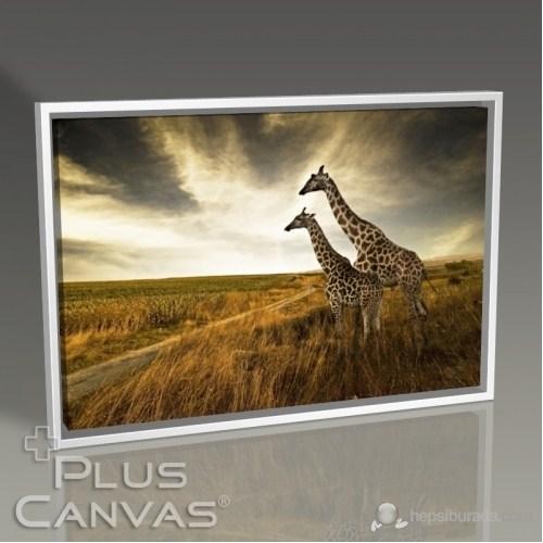 Pluscanvas - Giraffes Tablo