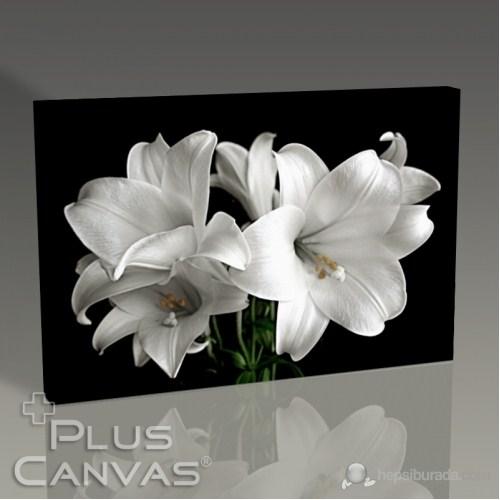 Pluscanvas - White Flower Tablo