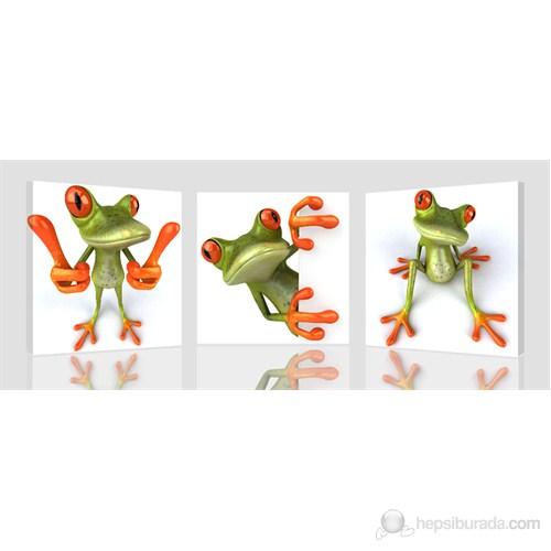 Kurbağa Kanvas Tablo