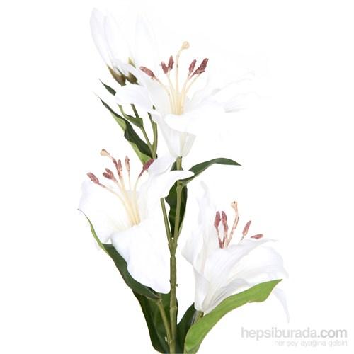 Lilyum Küçük Boy Beyaz